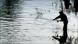 Angler generic
