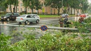 Workers clear fallen trees after storm in St Petersburg, 16/08/2010