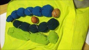 Peregrine eggs found in socks