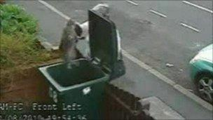 CCTV images of the cat being put in the bin in Coventry