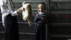 An ultra-Orthodox Jewish woman holds a chicken as her son reads a blessing before performing the Kaparot ritual, ahead of the holiday of Yom Kippur, in Bnei Brak near Tel Aviv on 15 September 2010.