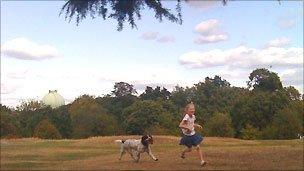 Playing in park with dog