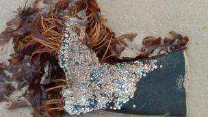 wellington boot lying on beach in seaweed
