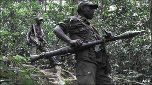 FDLR fighters in eastern DR Congo