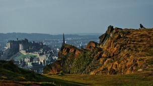 Crow on Salisbury Crags
