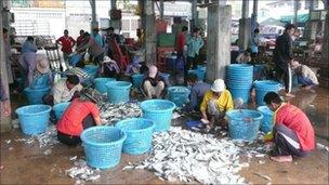 Fishermen sort through the catch