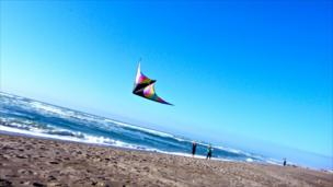 People flying a kite on a beach