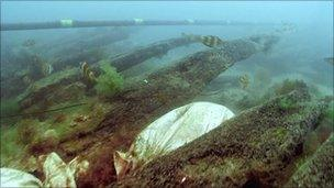 Ribs of the shipwreck