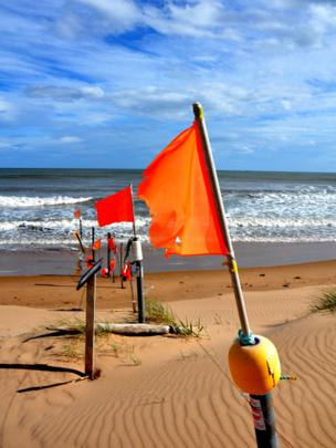 Flags on the Sands of Forvie