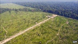 Aerial picture on 29 November 29, 2009 shows a sector of the Amazon forest, in the state of Para, in northern Brazil, illegally deforested