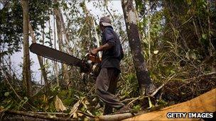 man with chainsaw in Sumatra