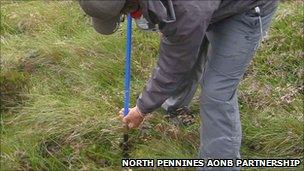Survey work is being undertaken on an area of peat bog in Cumbria