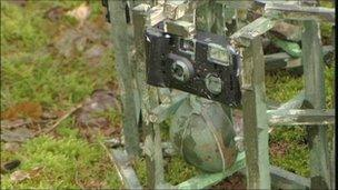 One of the 30 trip wire cameras
