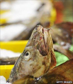 Fish packed in ice (Getty Images)