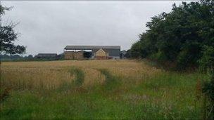 The farm at Stapleford Tawney