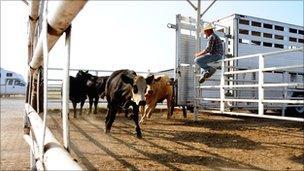 Farm in Oklahoma