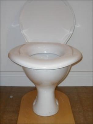 super sized toilet seat sales double bbc news