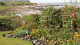 Garden on west coast of Orkney