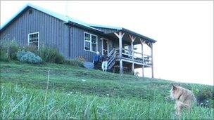 Nikki Fox's House