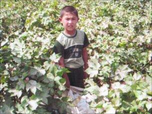 Image of child working in cotton field in Uzbekistan