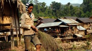 An Aka ethnic hilltribe man drys a wild herb used to make brooms.
