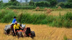 Men ride on a tractor in a field
