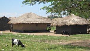 The village of Bugoma