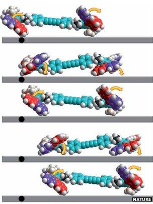 """Molecular simulation of nanoscale """"car"""""""