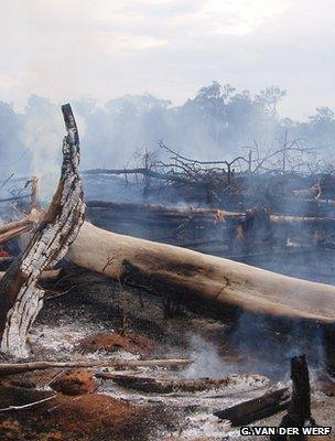 Smouldering remains of a forest fire, Brazil (Image: Guido van der Werf)
