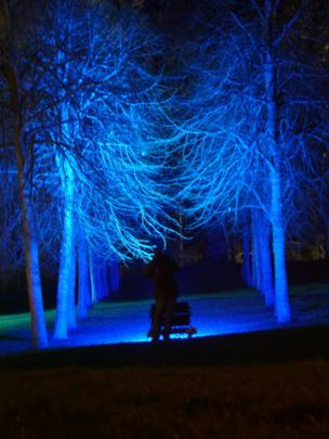 Trees at Crathes Castle illuminated during the Enchanted Castle light show