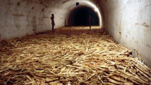 Gwaith Tania Bruguera o Cuba Gwobr Artes Mundi 5 (2012)