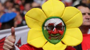 Welsh fan in Cardiff