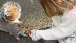 Catriona feeding a squirrel