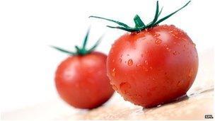 Tomato genome science