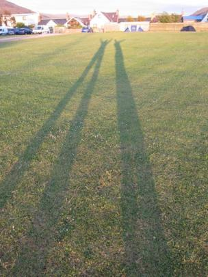 Long shadows in the grass