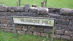 Primrose Hill, Y Bont-Faen