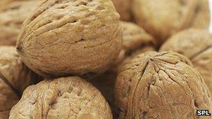 Walnuts 'improve sperm health' - BBC News