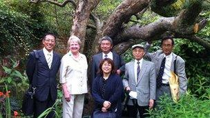 Japanese apple producers with the Bramley apple tree