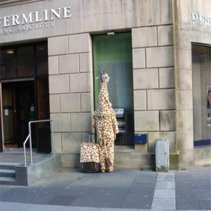 Jean-Marie Stewart took this shot in Paisley, because it's not every day you see a giraffe at a cash machine.