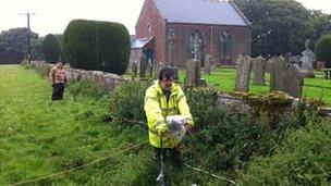 Volunteers are carrying out a non-invasive survey of the site