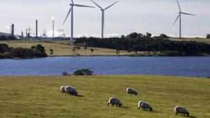 Sheep grazing in front of a windfarm and petrochemical plant