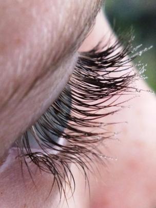 Dew on eyelashes