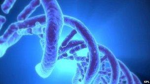 DNA mapping for cancer patients - BBC News on
