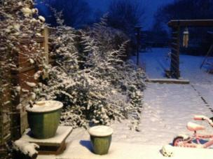 Garden covered in snow