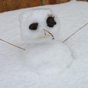 """Snowman"" in Fareham"