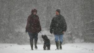 Couple walk their dog in Crawley, West Sussex