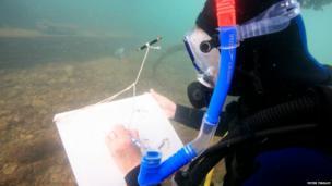 Antonia Phillips sketching underwater in Swanage