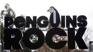 Penguins Rock, the revamped outdoor penguin pool at Edinburgh Zoo, is to reopen to the public on Thursday