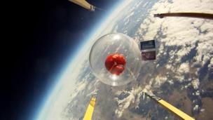 Red Nose in space