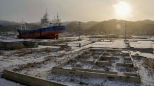 A local resident and a dog walk near a ship brought ashore by the 11 March 2011 tsunami and earthquake in Kesennuma, Miyagi Prefecture